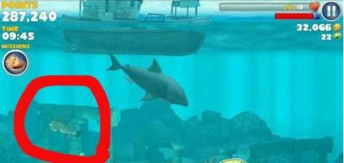 饥饿的鲨鱼进化中人面鱼在出没地点攻略