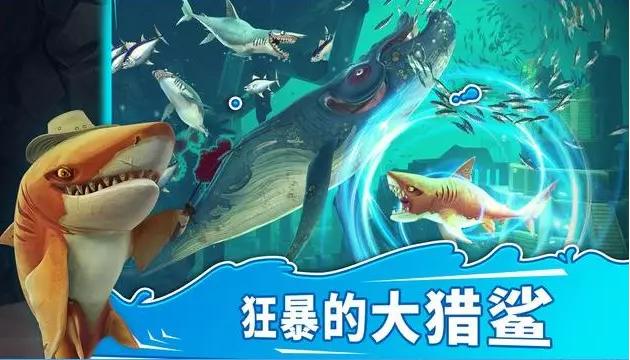 饥饿的鲨鱼进化独角鲸和皱鳃鲨对比攻略